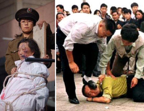Parlamento de Viena condena la sustracción de órganos en China
